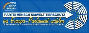 Partei ins EU-Parlament
