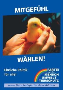 Wahlplakat Mitgefühl wählen