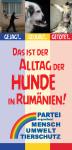 Faltblatt Rumänienhunde