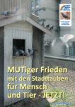 Stadttauben-Flyer