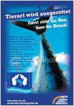 Thunfisch-Plakat