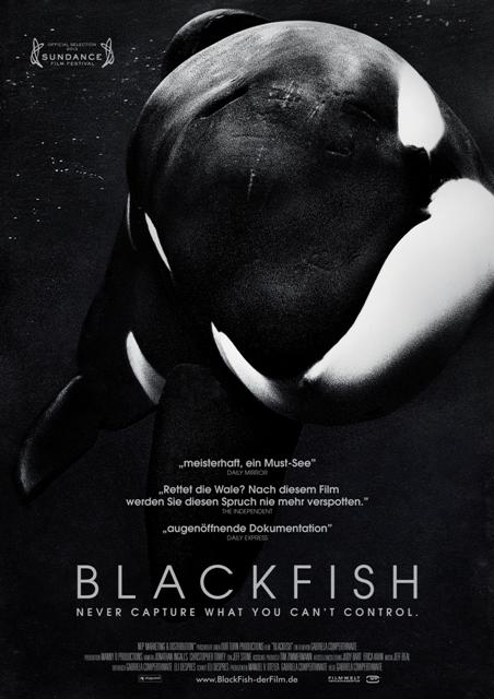 Orca Dokumentation