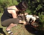 Dr. Jessica Frank beim Füttern von Streuner-Welpen in der Türkei