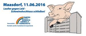 Aufruf zu Demo vor Schweinehochhaus 2016
