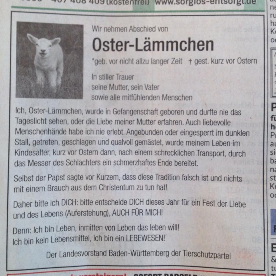 Pforzheimer Zeitung Anzeige
