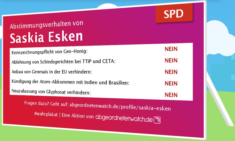 Abstimmugsverhalten Saskia Esken SPD Umweltschutz