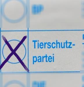 Stimmzettel Tierschutzpartei