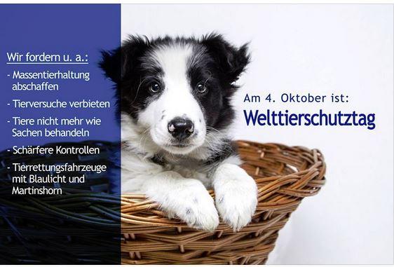 Gästebuch 2018 - Seite 4 Welttierschutztag