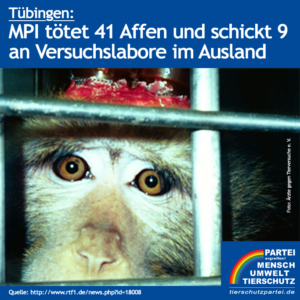 Affenversuche Tübingen - MPI-Affen tot oder verkauft