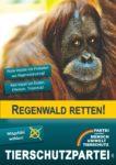 Wahlplakat Europawahl Regenwald