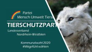 Kommunalwahl NRW 2020