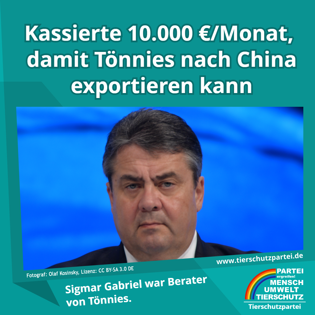 Gabriel Tönnies