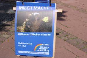 Plakat Milch und Kalb