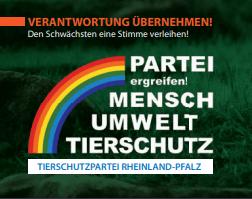 Landtagswahl Rheinland-Pfalz - Verantwortung übernehmen!
