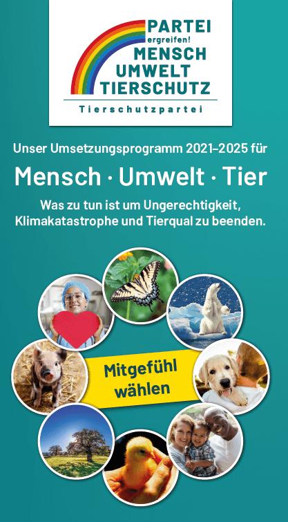 Titelbild Wahlprogramm Flyer Bundestagswahl 2021