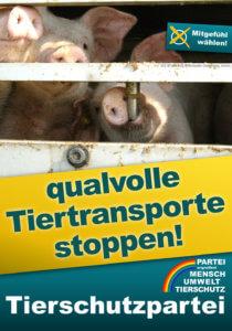 Nach der Bundestagswahl 2021 endlich Tiertransporte stoppen