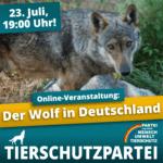 Der Wolf in Deutschland
