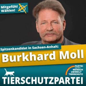 burkhard moll