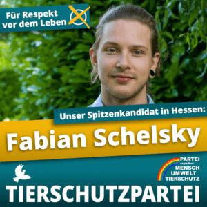 fabian schelsky