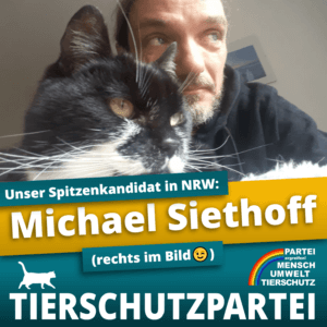 michael siethoff